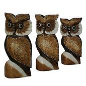Set of 3 Handcarved Wooden Owls (8,7,5 in)