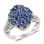 Himalayan Kyanite 14K YG and Platinum Over Sterling Silver Ring (Size 6.0) TGW 3.57 cts.