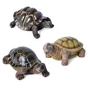 Set of 3 Multi Color Chroma Turtles (5x3 in)