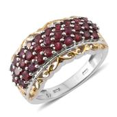 Anthill Garnet 14K YG and Platinum Over Sterling Silver Ring (Size 8.0) TGW 2.80 cts.