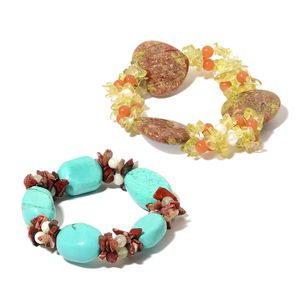 Set of 2 Unakite, Multi Gemstone Bracelets (Stretchable) TGW 558.00 cts.