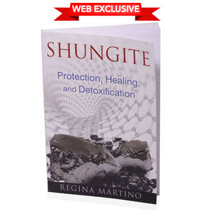 Shungite Protection Healing and Detoxification (Book)