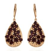 Mozambique Garnet 14K YG Over Sterling Silver Leaf Lever Back Earrings TGW 7.29 cts.